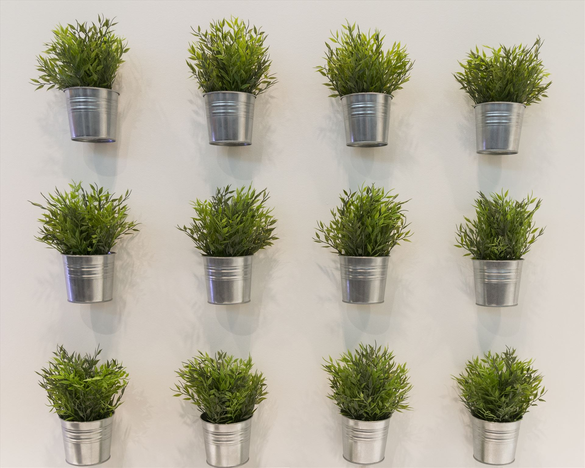 Green - Green plants on wall in vertical lines by Pucko